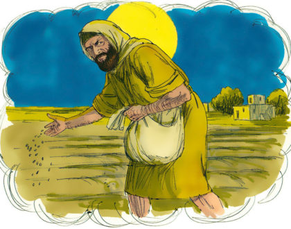 We Should Be The Wheat And Not The Tares
